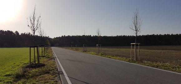Frauendorf / OL Lindenallee
